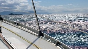 Meri elää....